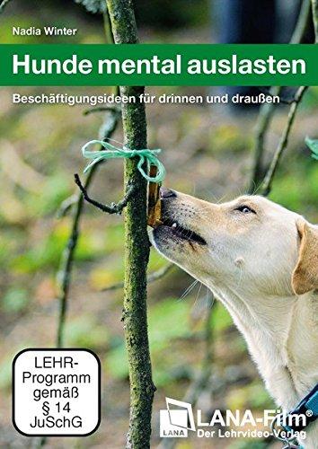 hunde-mental-auslasten-beschaftigungsideen-fur-drinnen-und-draussen