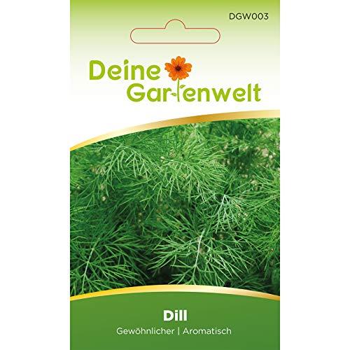 Dill Samen (Gewöhnlicher)   Dillsamen   Saatgut für Dill-Pflanzen   Kräutersamen