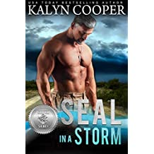 SEAL in a Storm (Silver SEALs Book 5)