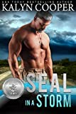 SEAL in a Storm (Silver SEALs Book 5) (English Edition)