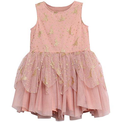 Dress Tulle Tinker Bell, Rosa (Misty Rose 2270), 98 (Herstellergröße: 3Y) (Tinker Bell-kleider)