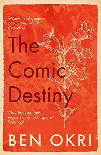 The Comic Destiny (English Edition)