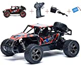 Best Fast Rc - MWG Exports Co 2.4Ghz Super Fast Racing Drifting Review
