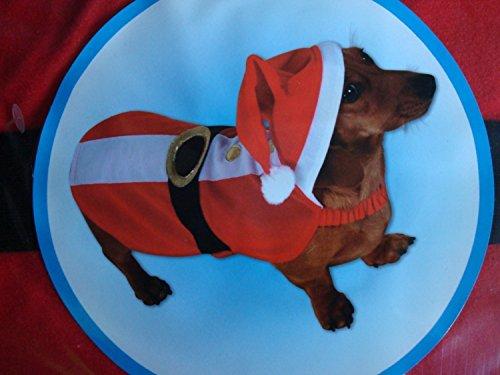 festive-kleid-up-dog-outfit-santa