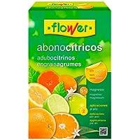 Flower 10771 - Abono cítricos, 1 kg