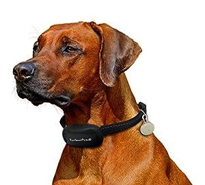 ForGoodPets Collier Anti-Aboiement - Collier équipé d'une lumière LED, fonctionnant avec 7 niveaux de sensibilité, SON et VIBRATION seulement. Collier de dressage pour petits et grands chiens, léger et ajustable.