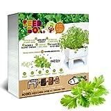 Seed Box Cultívame-Potager urbain Persil ECO