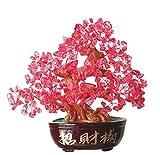"""fengshuiyan 9,5""""Cuarzo rosa Gem piedra cristal Natural árbol de dinero riqueza suerte dinero árbol de oficina salón Gran regalo de inauguración de la casa salud curación y decoración de hogar buena suerte"""