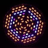 Lampadine, Lampadine per casa, 1pcs morsen crescono Full LED specturm 80w e27 principale coltiva la luce UV ir rosso bianco blu per piante da fiore box crescere Bulbi