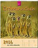 ERDMÄNNCHEN - Original Stürtz-Kalender 2016 - Hochformat-Kalender 36 x 45 cm mit Platz für Notizen (Notiz-Kalender)