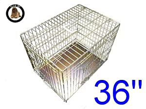 Ellie-Bo Dog Puppy Cage Folding 2 Door Crate with Non-Chew Metal Tray Large 36-inch