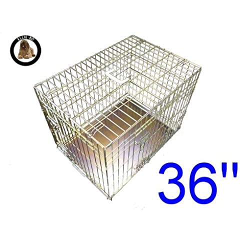 Ellie-Bo cucciolo del cane gabbia pieghevole Crate 2 porta con non-Chew vassoio di metallo di grandi dimensioni in oro da 36 pollici