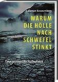 Warum die Hölle nach Schwefel stinkt: Eine geologische Höllenfahrt - Salomon Kroonenberg