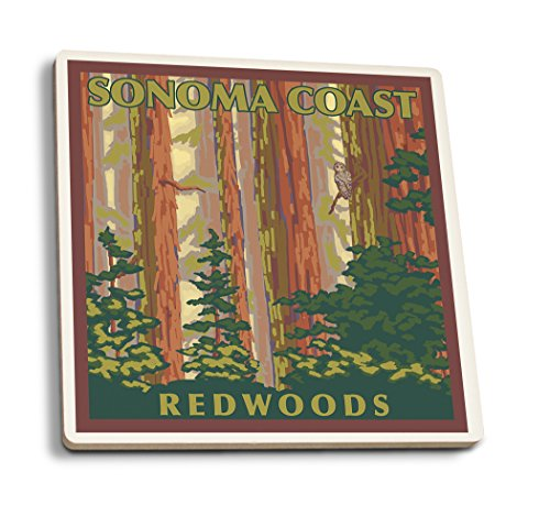 Sonoma Coast Redwoods, Kalifornien-Forest view, keramik, mehrfarbig, 4 Coaster Set Sonoma-bar Set