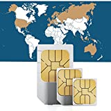 travSIM Global Internet SIM für 30 Länder + 750MB für 30 Tage - Prepaid Daten SIM- Standard,Micro, Nano SIM