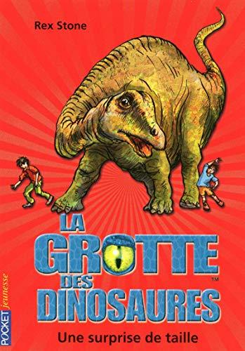 11. La grotte des dinosaures : Une surprise de taille (11)