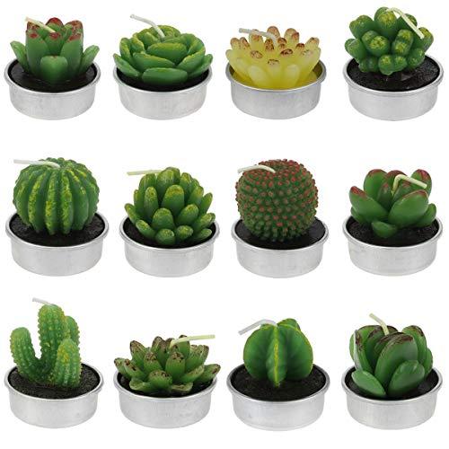 Wohnkultur Kerzen 12 Stücke Kaktus Teelicht Lange Brenn Sukkulenten Tee Licht Kerze Halter Neue StraßEnpreis