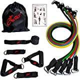 ZEUS Resistance Bands Widerstandsband Set- 5 Widerstandsbänder aus Latex