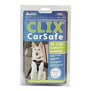 COA CarSafe, Large