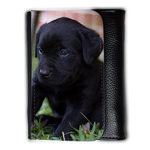 Portemonnaie Geldbörse Brieftasche // V00003210 nette Labrador-Welpen // Medium Size Wallet (Labrador-geldbörse)