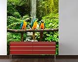 selbstklebende Fototapete - Blau-Gelber Macaw Papagei - 135x150 cm - Tapete mit Kleber – Wandtapete – Poster – Dekoration – Wandbild – Wandposter – Wand – Fotofolie – Bild – Wandbilder - Wanddeko
