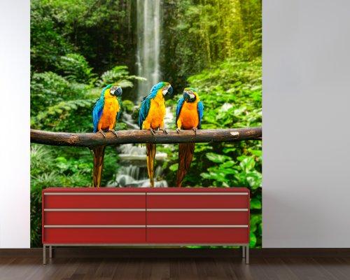 Fototapete - Blau-Gelber Macaw Papagei - 135x150 cm - mit Kleister - Poster - Foto auf Tapete - Wandbild - Wandtapete - Vliestapete ()