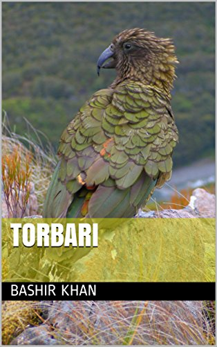 Torbari (Galician Edition)