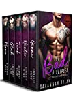 The Bad Disciples Motorcycle Romance: The Series