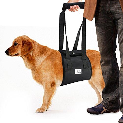 Fur E. Frenz Arnés de elevación para perro, con correa ACL, para limpar,...
