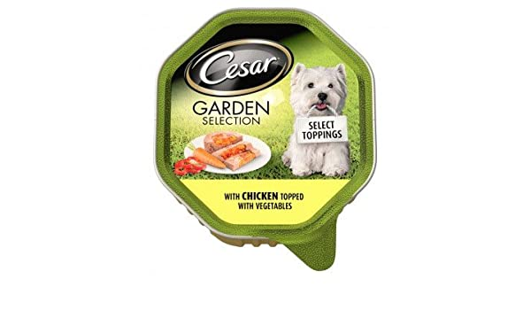Cesar Garden Selection With Chicken Topped With Vegetables 14 X