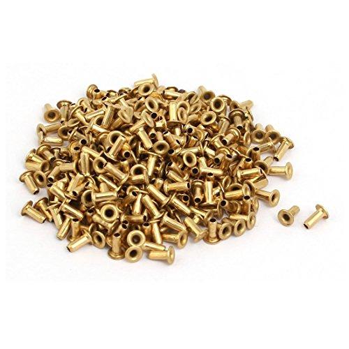 Portal Cool 500 Stück M1,7 x 4 mm messingbeschichtetes Metall Hohl-Ösen Nieten Goldton
