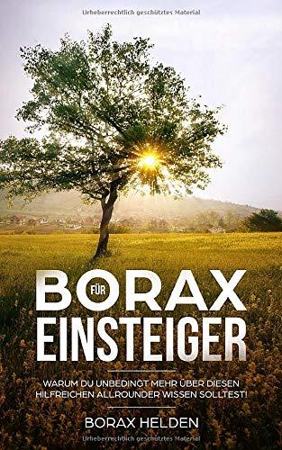 borax das vergessene heilmittel