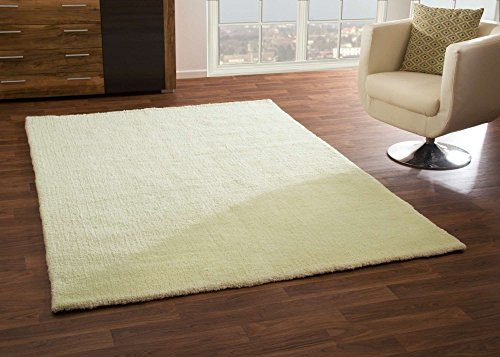 modern-rug-nicki-soft-and-cosy-pile-in-pastel-green-oekotex-certified-size-140x200-cm-46x66