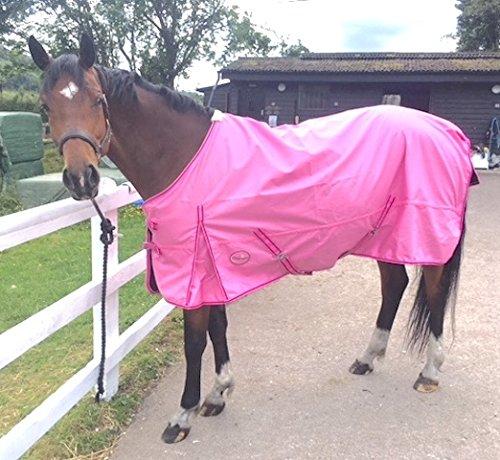 Cwell Equine neuen besten Qualität leicht Pink Pferdedecke/Regendecke ohne Füllung 600Denier 100{50e63f951c24a0240cff01519d367f3f76170a603141e60af14f58dea1a1d0f9} wasserdicht, atmungsaktiv, 600Denier (6\'3