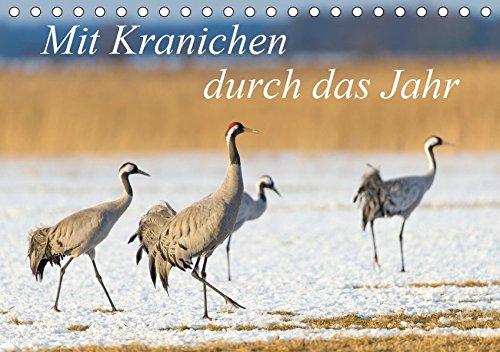 Mit Kranichen durch das Jahr (Tischkalender 2019 DIN A5 quer): Kraniche, die größten Vögel Deutschlands, werden in eindrucksvollen Fotografien gezeigt. (Monatskalender, 14 Seiten ) (CALVENDO Tiere)