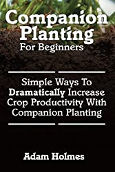 Companion Planting For Beginners: Simple Ways To Dramatically Increase Crop Prod