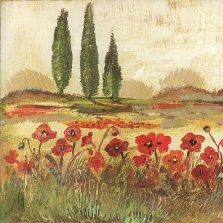 Poppy Field II von Gorham, GREGORY–Fine Art Print erhältlich auf Leinwand und Papier, canvas, SMALL (16.5 x 16.5 Inches )
