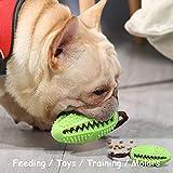 WeyTy Hundezahnbürste, Hundezahnreinigung Hund Zahnstäbchen ungiftiger Naturkautschuk langlebig beißsicher, für verwendet Werden Hunde Kauspielzeug Spielzeug multifunktionales Haustierprodukt (Grün)