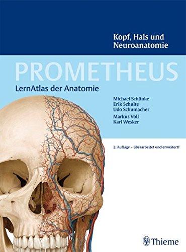 Free PROMETHEUS LernAtlas der Anatomie: Kopf, Hals und Neuroanatomie ...
