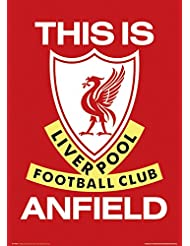 GB eye LTD, Liverpool, This is Anfield, Maxi Poster, 61 x 91,5 cm