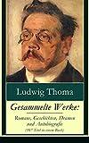 Gesammelte Werke: Romane,