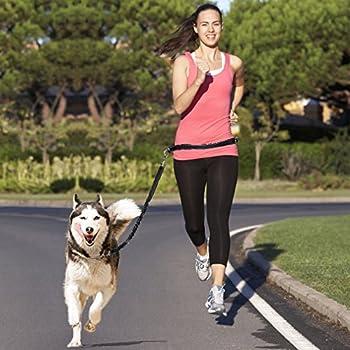 Laisse de Chien Pour Courir, Topist Rétractable Laisse pour Chien pour Course à Pied Jogging Randonnée Marche, Mains Libres Laisse de Course pour Chien avec Ceinture Réglable Nylon