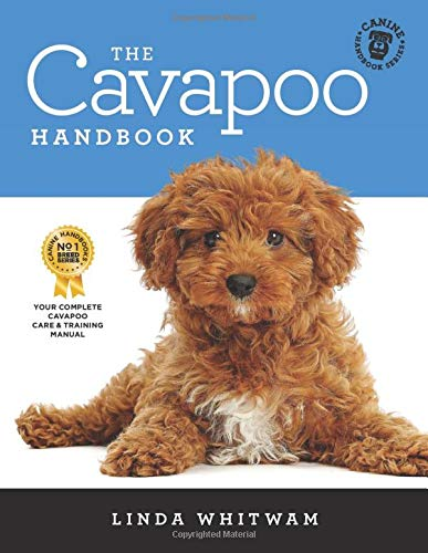 The Cavapoo Handbook: The Essential Guide for New & Prospective Cavapoo Owners (Canine Handbooks, Band 14)