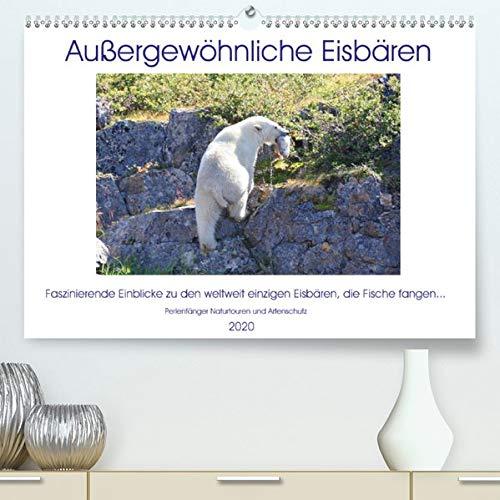 """Das Leben der etwas """"anderen"""" Eisbären!(Premium, hochwertiger DIN A2 Wandkalender 2020, Kunstdruck in Hochglanz): Aus dem Leben der etwas """"anderen"""" ... (Monatskalender, 14 Seiten ) (CALVENDO Tiere)"""