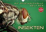 Die geheimnisvolle Welt der Insekten (Wandkalender 2020 DIN A4 quer): Faszinierende Nahaufnahmen von verschiedenen Insekten (Geburtstagskalender, 14 Seiten ) (CALVENDO Tiere) -