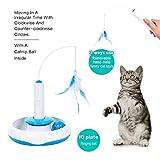 elektronisches katzenspielzeug Vergleich