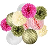 Aspiredeal 12 Pieces Tissue Paper Flowers Honeycomb Lanterns Wedding Party Decor