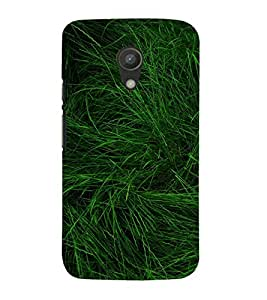 99Sublimation green Grass 3D Hard Polycarbonate Back Case Cover for Motorola Moto G2 :: 2nd Gen :: G XT1068 :: G 2nd Gen :: G Dual SIM 2nd gen :: G Dual SIM 2014