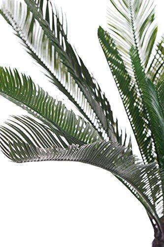 Sarah B XXL Kunst Palme Cycas REVOLUTA Japanischer Palmenfarn JWT2363, Große künstliche Fächerpalme, 100 cm hoch, Kunstpflanze, Kunstblume, Kunstbaum, Zimmerpflanze künstlich