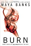 Burn : Book Three of the Breathless Trilogy